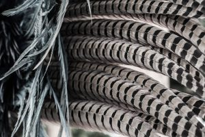 Feather Crown - Mayan Village Private Tour Photo Safari