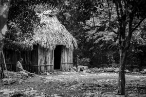 Mayan Village & Muyil Ruins Private Tour Photo Safari