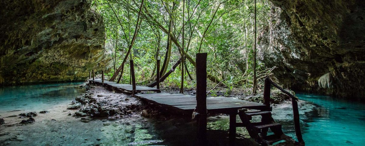 PRIVATE TOUR CENOTE